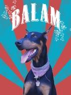 Meet Balam