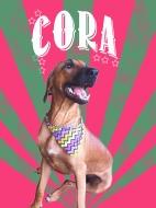 Meet Cora