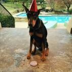 Baliam 1th Birthday