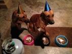 Cora&Tau 1th Birthday